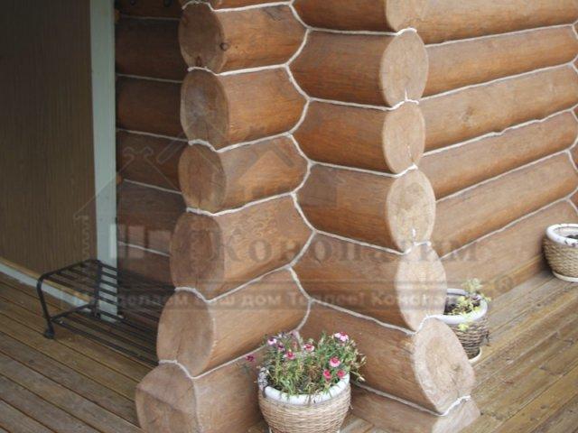 Фото-внешняя конопатка бани ручной рубки в Симагино. Цветы у входа.